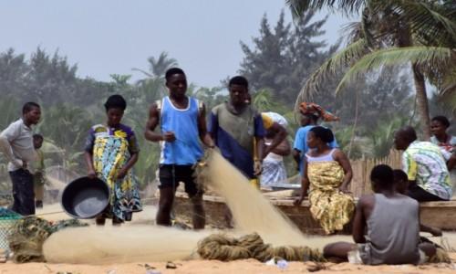 Zdjecie BENIN / Benin południowy / Grand Popo / Naprawiając sieć