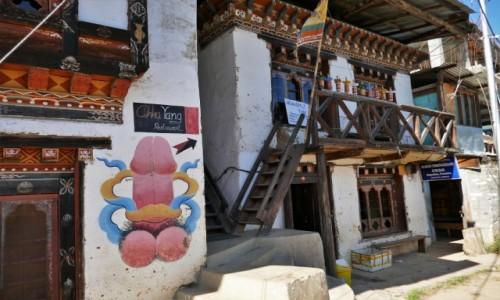 Zdjecie BHUTAN / Punakha / Gdzieś po drodze / Bhutańskie chałupki
