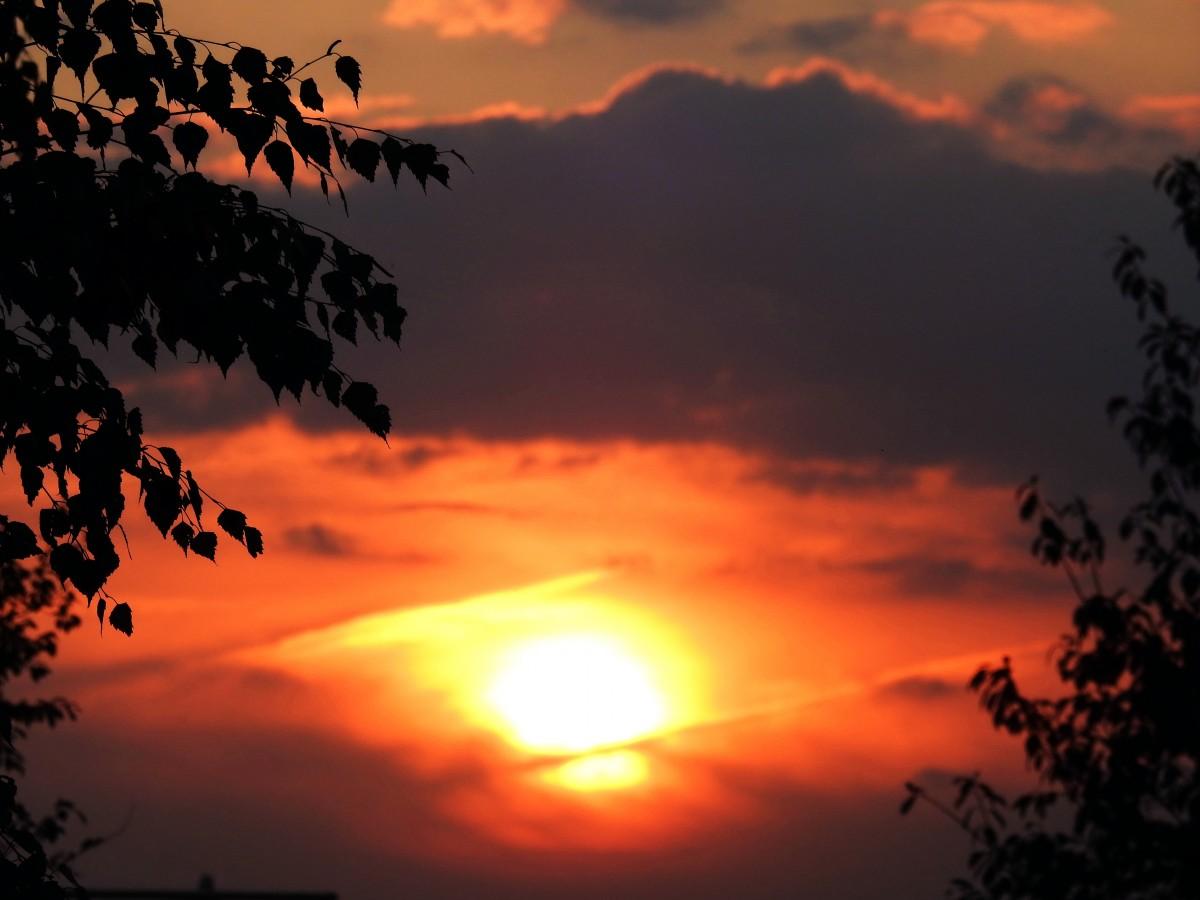 Zdjęcia: Połotkowo, Grodno, Zachód słońca, BIAłORUś
