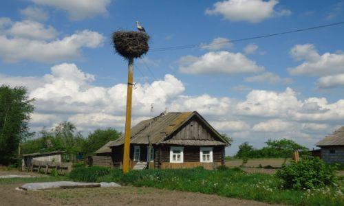BIAłORUś / Obwód brzeski / Polesie / Osownica (biał. Asaunica) / Poleskie klimaty ....
