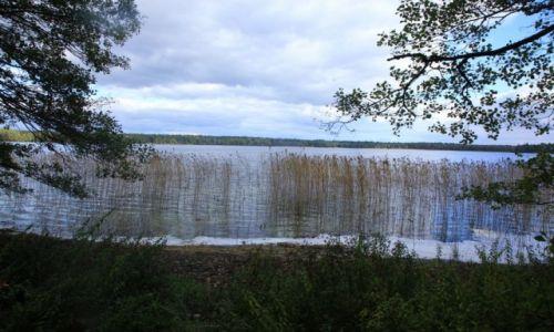 Zdjecie BIAłORUś / Grodno / Nowogródek / Jezioro Świteź