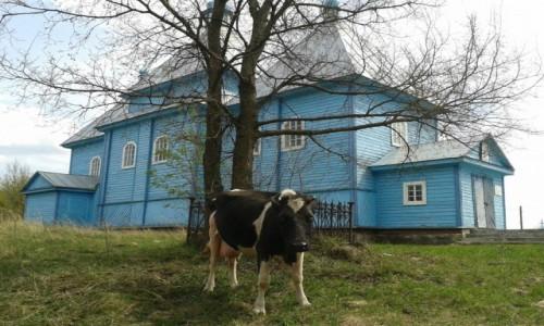 Zdjęcie BIAłORUś / - / Polesie / Cerkwie Polesia 2