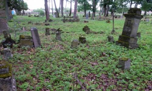 Zdjęcie BIAłORUś / Lida / Lida / Zdewastowany polski cmentarz