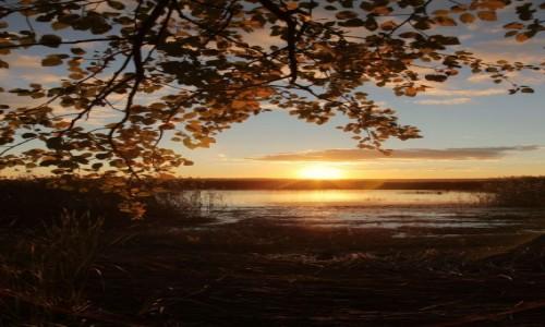 Zdjęcie BIAłORUś / Witebsk / Brasław  / O zachodzie nad jeziorem Drywiaty