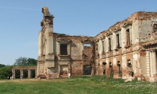 Zdjecie BIAłORUś / Obwód brzeski, rejon prużański / Różana / Ruiny pałacu Sapiehów