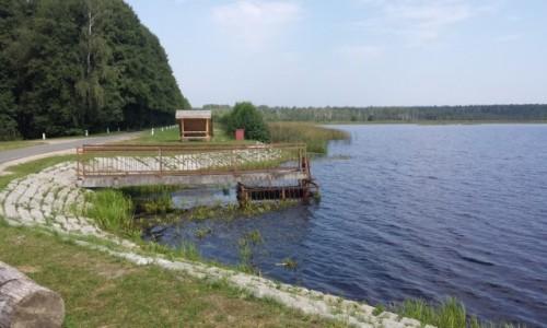 Zdjecie BIAłORUś / Puszcza Białowieska / Kamieniuki / Jezioro na Białorusi