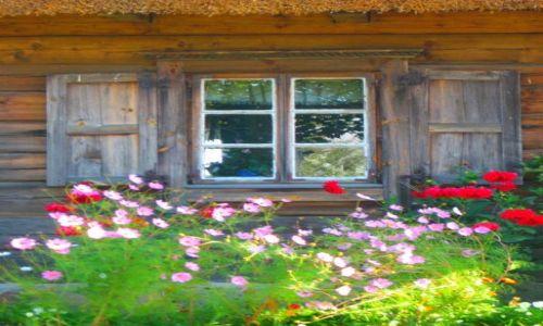 Zdjęcie BIAłORUś / grodzieński / Zaosie / okno dworku w Zaosiu