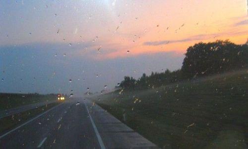 Zdjęcie BIAłORUś / brzeski /  okolice Brześcia / przez szybę, po deszczu...