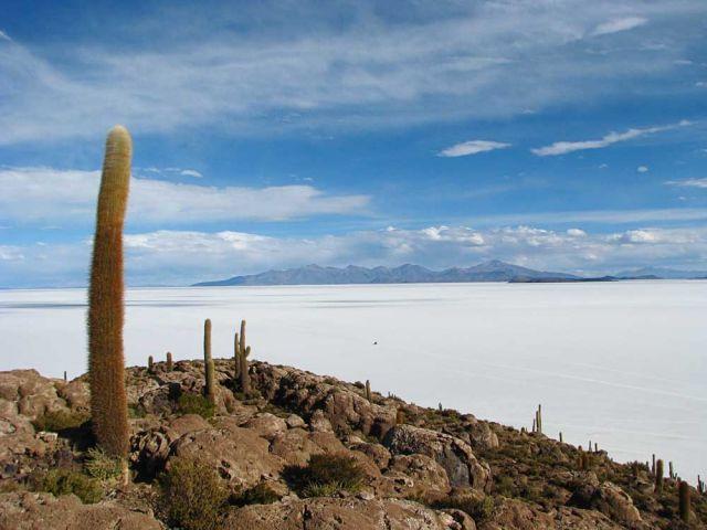 Zdjęcia: Salar De Uyuni, Salar, Salar de Uyuni, BOLIWIA