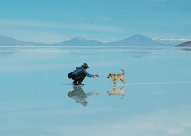 Zdjęcia: Boliwia, Boliwia, Boliwia, BOLIWIA