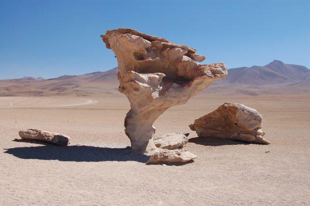 Zdjęcia: Okolice Uyuni, Południowa Boliwia przy granicy z Chile, Arbol de piedra - skalne drzewo, BOLIWIA