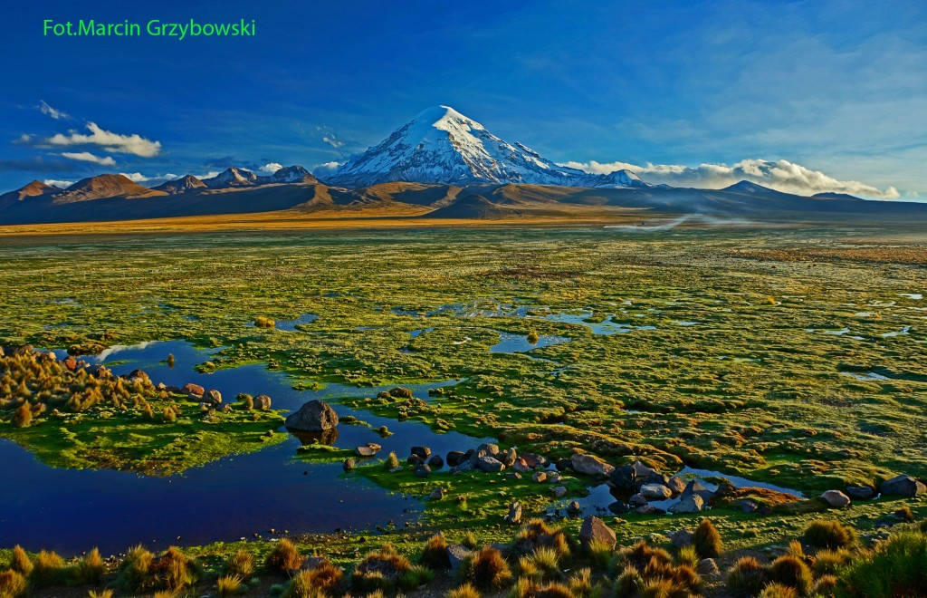 Zdjęcia: Boliwia, Boliwia-, Wulkan Sajama, BOLIWIA