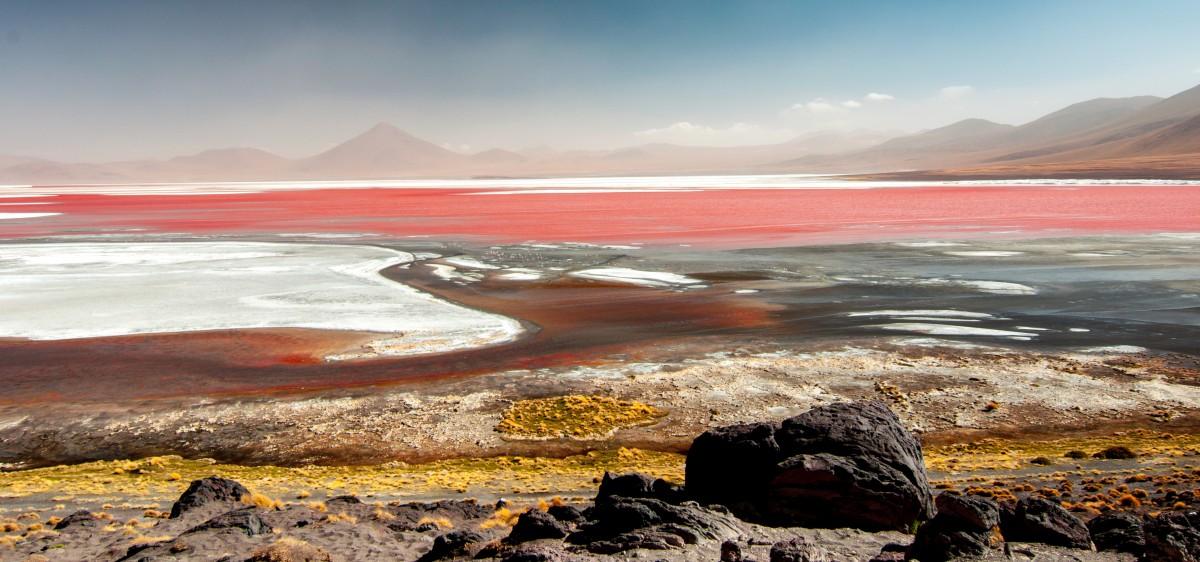 Zdjęcia: Czerwona Laguna, Altiplano, Magiczna Boliwia, BOLIWIA