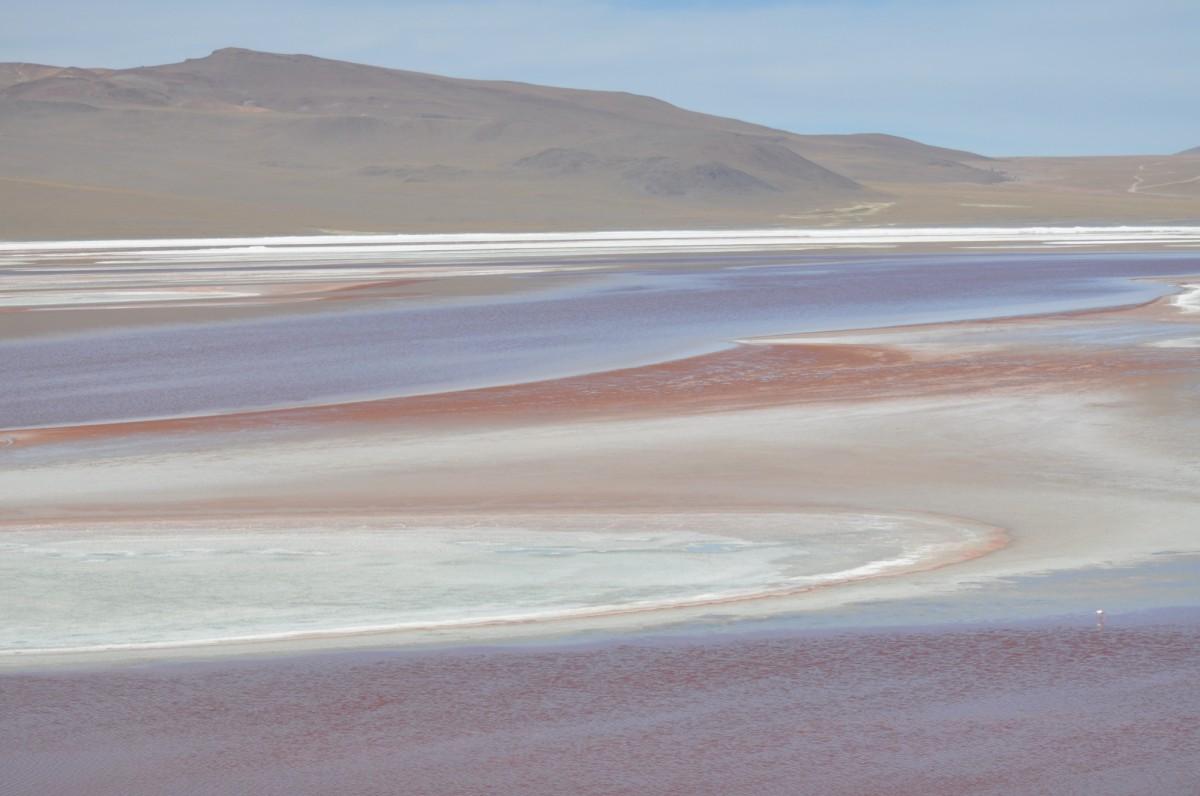 Zdjęcia: Laguna Colorada, Uyuni, Laguna Colorada, BOLIWIA
