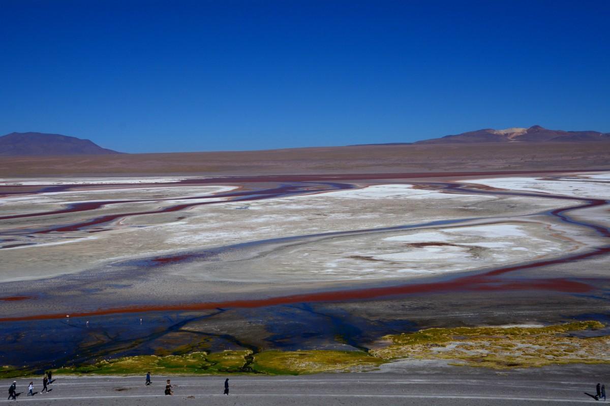 Zdjęcia: Laguna Colorada, Altiplano-Potosi, Widoczek z esami :), BOLIWIA