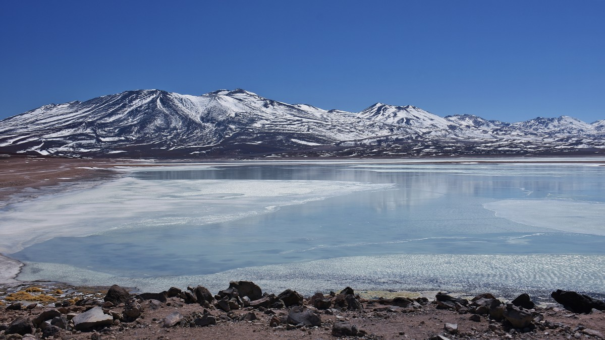 Zdjęcia: Laguna Blanca, Sur Lípez Province, Laguna Blanca, BOLIWIA