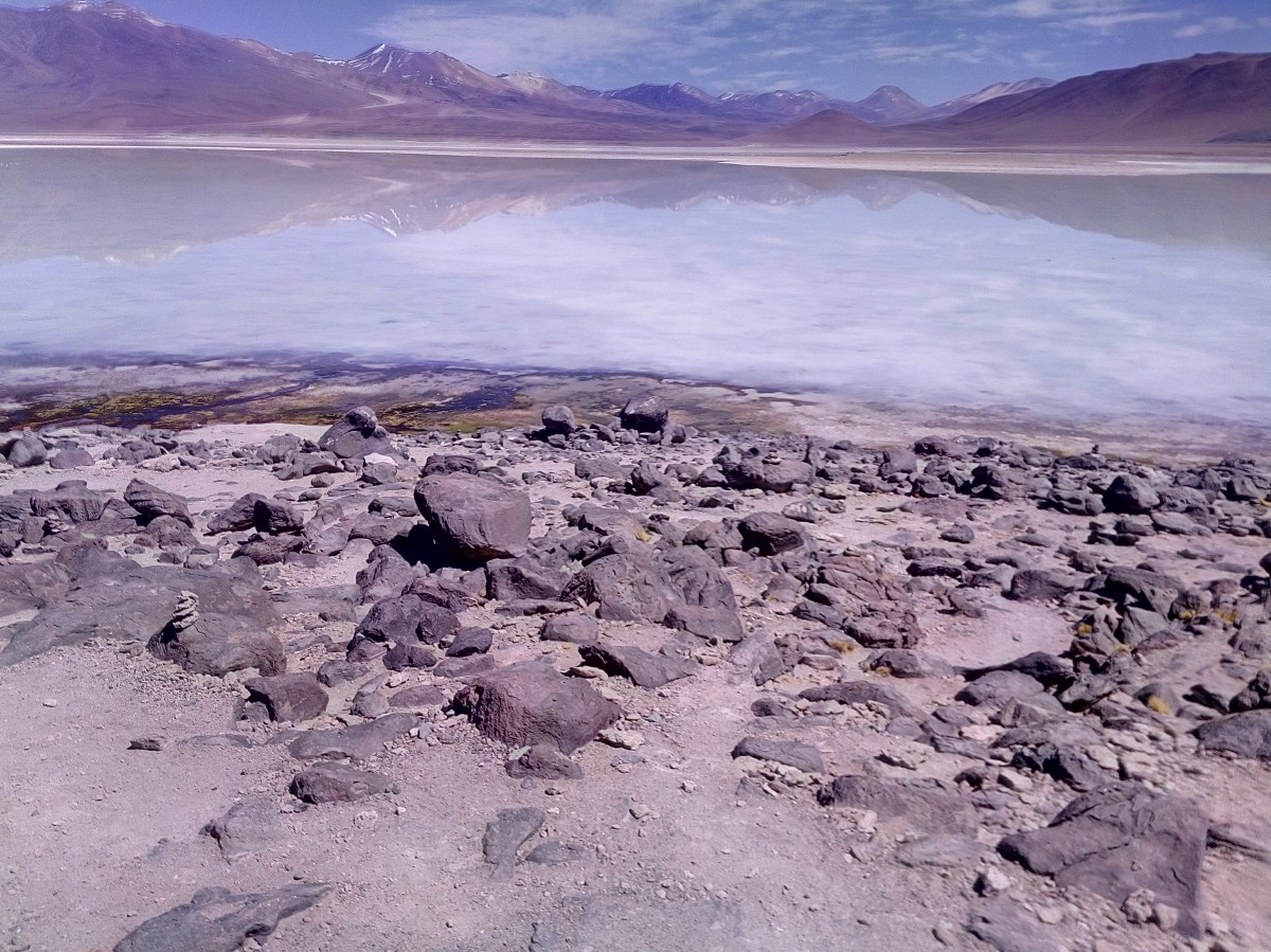 Zdjęcia: Laguna Bianca 4350m.n.p.m., Reserva Nacional de Fauna Andina Eduardo Avaroa, CHILE I BOLIWIA - SAMOTNIE I INTENSYWNIE, BOLIWIA