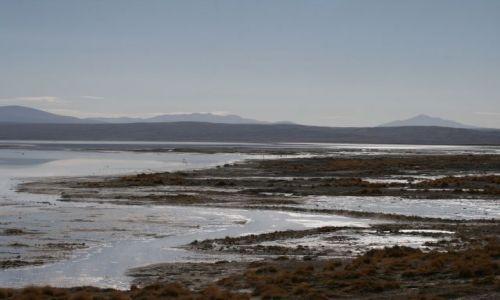 Zdjęcie BOLIWIA / Altiplano / Solar / Laguna