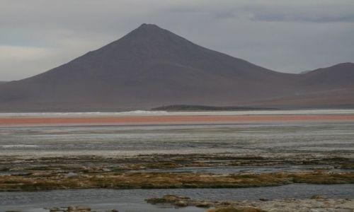 Zdjęcie BOLIWIA / Potosi / Altiplano / Laguna Colorado i Licancabur