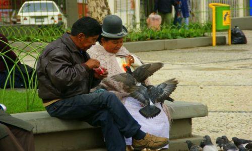 Zdjęcie BOLIWIA / Boliwia / Boliwia / Gruchanie