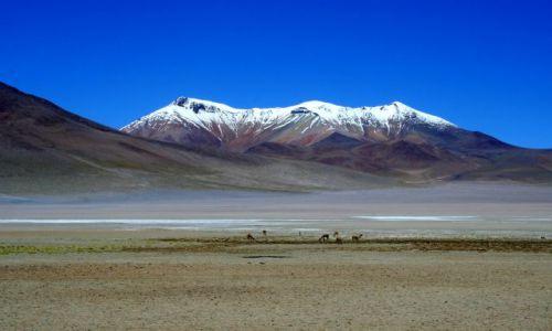 Zdjęcie BOLIWIA / - / Salar de Uyuni / Jest takie miejsce...
