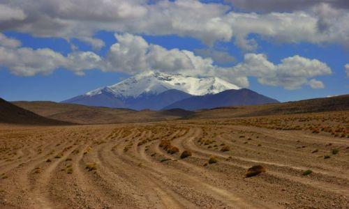 Zdjęcie BOLIWIA / CANQUELA / CANQUELA / DROGA