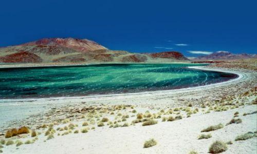 Zdjęcie BOLIWIA / - / Boliwijskie Altiplano / Laguna Celeste