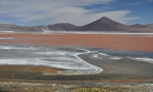 Zdjęcie BOLIWIA / Altiplano / Laguna Colorado 4278 m.n.p.m. / Mars na Ziemi