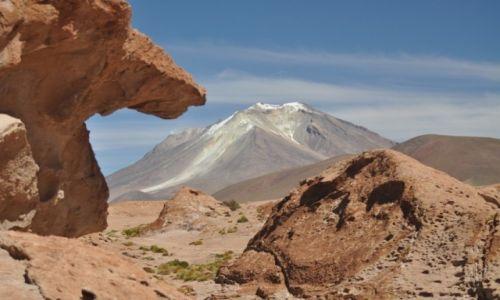 Zdjecie BOLIWIA / Potosi / Altiplano / Ollaque 5868 m.