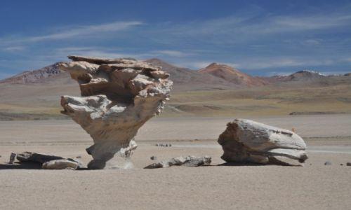 Zdjecie BOLIWIA / Potosi / Altiplano / Efekty wietrzenia