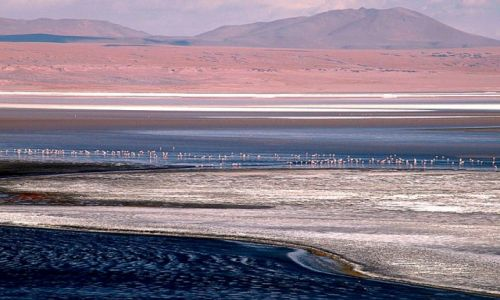 Zdjecie BOLIWIA / - / Laguna Colorada / konkurs-pejzaż