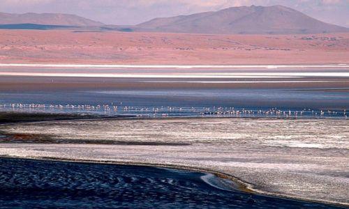 Zdjecie BOLIWIA / - / Laguna Colorada / konkurs-pejza�