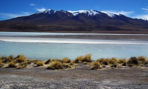 Zdjecie BOLIWIA / Altiplano / Altiplano / Laguna Hedionda