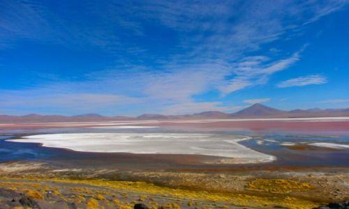 Zdjecie BOLIWIA / Salar Uyuni / Laguna Colorada / Czerwono mi