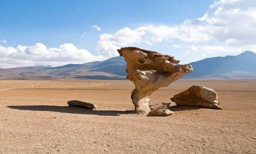 Zdjecie BOLIWIA / - / Altiplano / niczym z obrazu Dalego