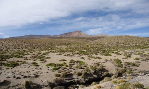 Zdjęcie BOLIWIA / Oruro / Paso Chungará-Tambo Quemado / Boliwijskie krajobrazy