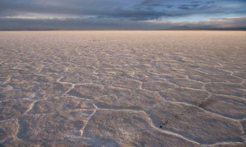 Zdjęcie BOLIWIA / Potosi / Salar de Uyuni / Krajobraz solny