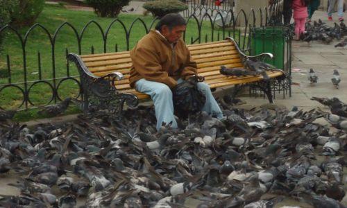 Zdjecie BOLIWIA / La Paz / La Paz / Karmiący gołębie