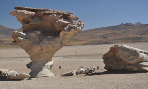 Zdjęcie BOLIWIA / Pustynia Siloli / Pustynia Siloli / Cudowna Boliwia 2