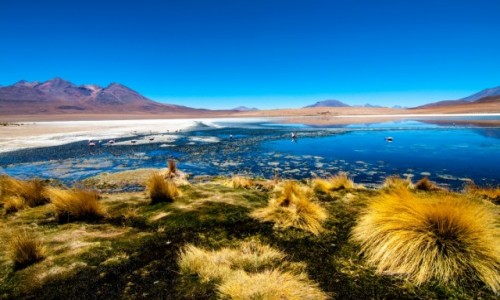 Zdjęcie BOLIWIA / Altiplano / Niebieska Laguna / Magiczna Boliwia