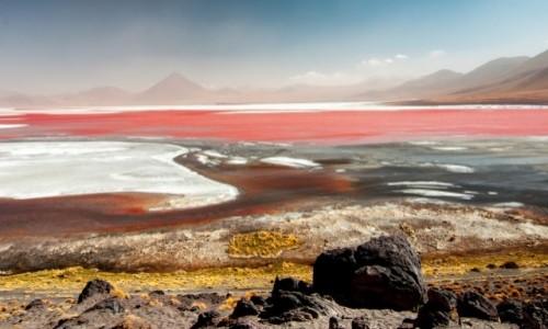 Zdjecie BOLIWIA / Altiplano / Czerwona Laguna / Magiczna Boliwi