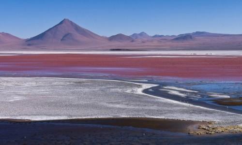 Zdjecie BOLIWIA / Altiplano / / / Laguna Colorada