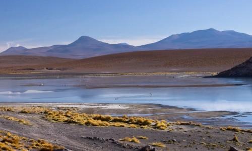 BOLIWIA / Altiplano / gdzieś na 4500 npm / Poranek