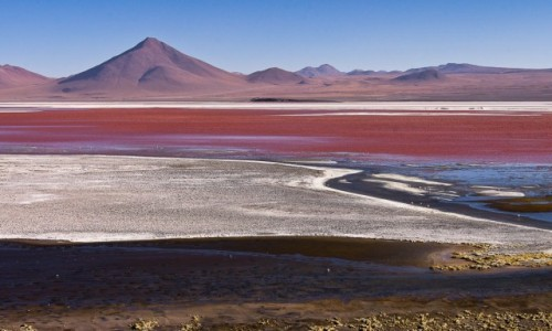 BOLIWIA / Altiplano / Laguna Colorada / Nagroda dla podróżnika