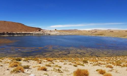 Zdjęcie BOLIWIA / Altiplano-Potosi / Laguna Negra / Laguna Negra