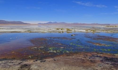 Zdjęcie BOLIWIA / Altiplano / Laguna Chalviri / Kolorowa przestrzeń