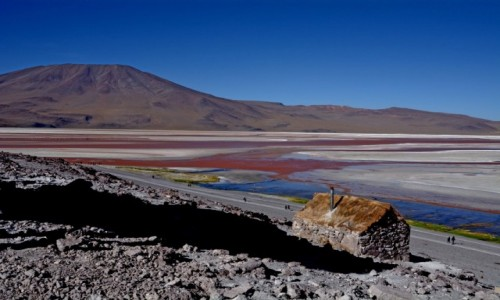 Zdjęcie BOLIWIA / Altiplano-Potosi / Laguna Colorada / Widoczek z chatką