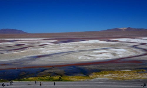Zdjecie BOLIWIA / Altiplano-Potosi / Laguna Colorada / Widoczek z esami :)