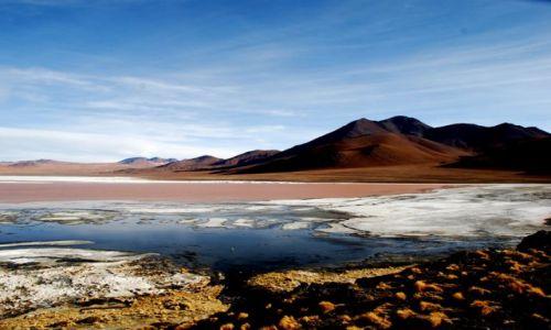 Zdjecie BOLIWIA / Południowo-zachodnia Boliwia / Boliwia / Laguna Colorada