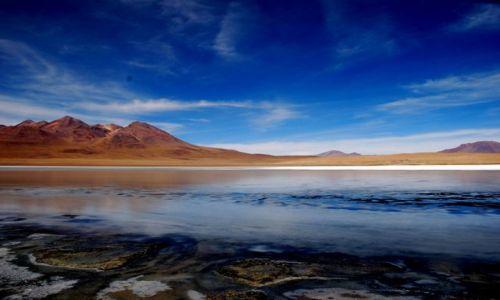 BOLIWIA / południowo-zachodnia Boliwia / Altiplano, Boliwia / Laguna Hedionda